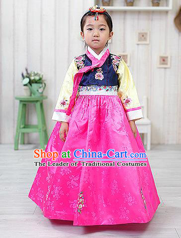 Korean National Handmade Formal Occasions Embroidered Navy Blouse and Pink Dress, Asian Korean Girls Palace Hanbok Costume for Kids