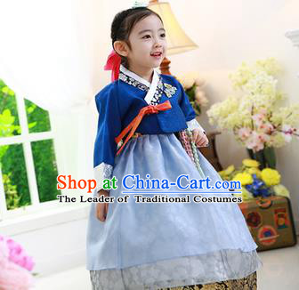 Korean National Handmade Formal Occasions Embroidered Blue Blouse and Dress, Asian Korean Girls Palace Hanbok Costume for Kids