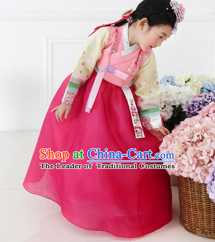 Asian Korean National Handmade Formal Occasions Embroidered Pink Blouse and Dress Hanbok Costume for Kids