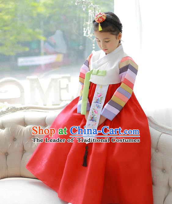 Asian Korean National Handmade Formal Occasions Embroidery White Blouse and Red Dress Hanbok Costume for Kids