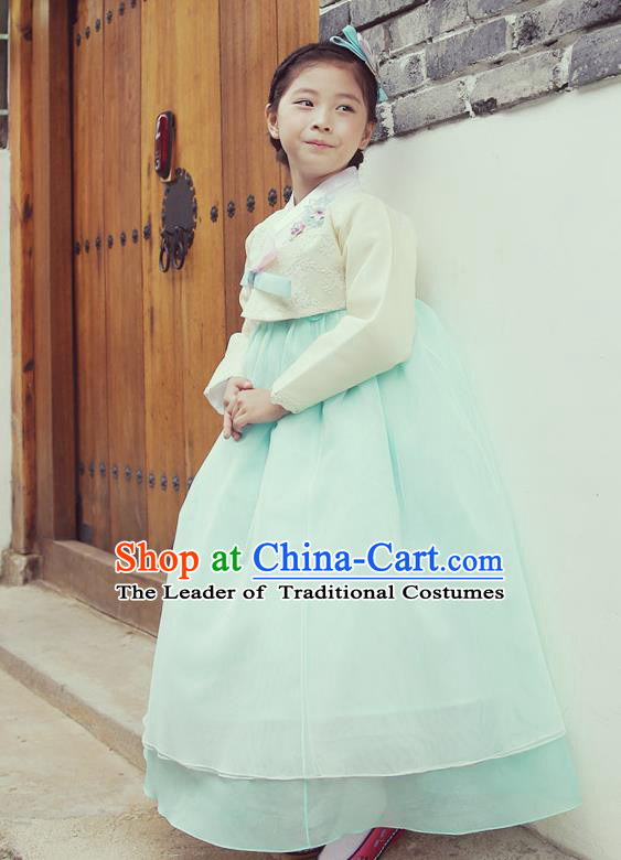 Asian Korean National Handmade Formal Occasions Wedding Embroidered White Blouse and Blue Dress Traditional Palace Hanbok Costume for Kids