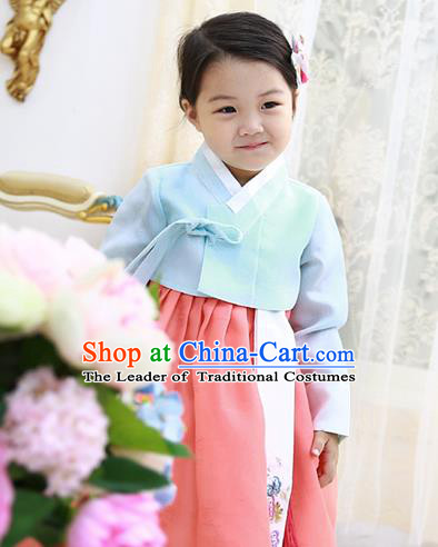 Asian Korean National Handmade Formal Occasions Wedding Clothing Blue Blouse and Pink Dress Palace Hanbok Costume for Kids