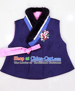 Asian Korean National Traditional Handmade Formal Occasions Embroidered Blue Hanbok Waistcoat for Kids