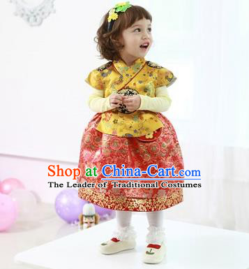 Asian Korean National Handmade Formal Occasions Wedding Bride Clothing Embroidered Yellow Blouse and Red Dress Palace Hanbok Costume for Kids