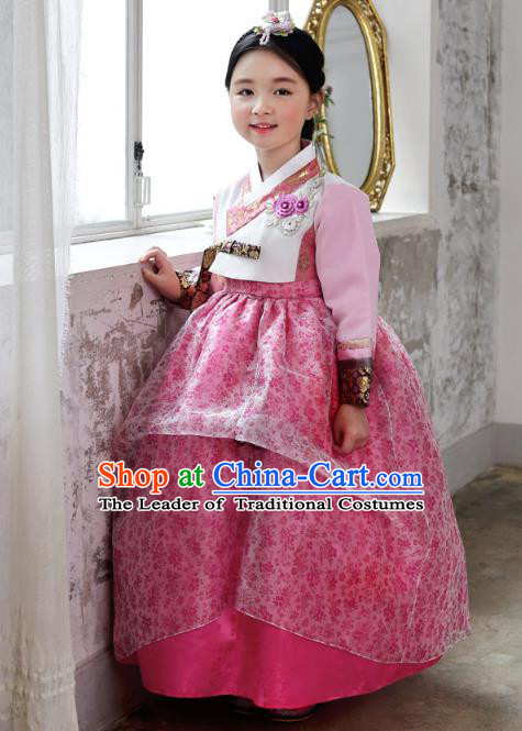 Asian Korean National Handmade Formal Occasions Wedding Bride Clothing Embroidered Blouse and Pink Dress Palace Hanbok Costume for Kids