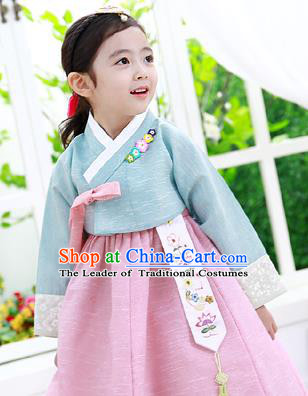 Asian Korean National Handmade Formal Occasions Clothing Embroidered Blue Blouse and Pink Dress Palace Hanbok Costume for Kids