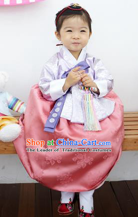 Asian Korean National Handmade Formal Occasions Clothing Embroidered Lilac Blouse and Pink Dress Palace Hanbok Costume for Kids