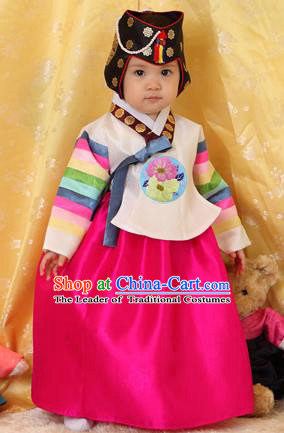 Asian Korean National Handmade Formal Occasions Clothing Embroidered Yellow Blouse and Rosy Dress Palace Hanbok Costume for Kids