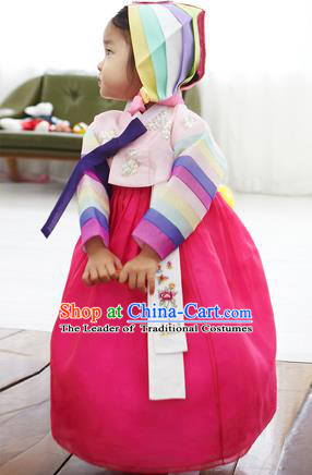 Asian Korean National Handmade Formal Occasions Clothing Embroidered Pink Blouse and Rosy Dress Palace Hanbok Costume for Kids