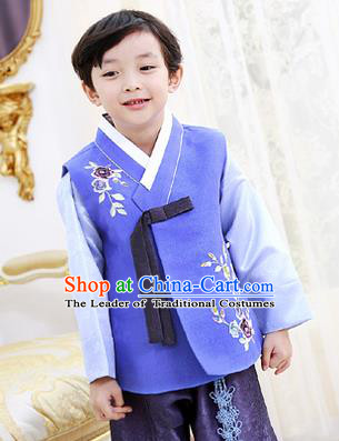 Korean National Handmade Formal Occasions Boys Hanbok Embroidered Blue Costume Complete Set for Kids