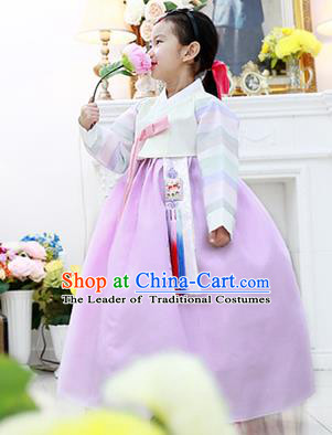 Korean National Handmade Formal Occasions Girls Hanbok Costume Embroidered White Blouse and Purple Dress for Kids