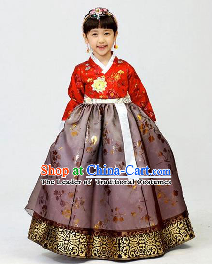 Asian Korean National Handmade Formal Occasions Wedding Girls Clothing Embroidered Red Blouse and Purple Dress Palace Hanbok Costume for Kids