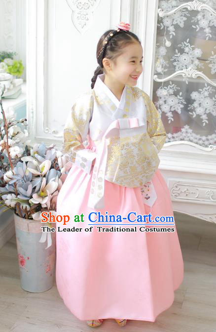 Asian Korean National Handmade Formal Occasions Wedding Girls Clothing Embroidered Beige Blouse and Pink Dress Palace Hanbok Costume for Kids