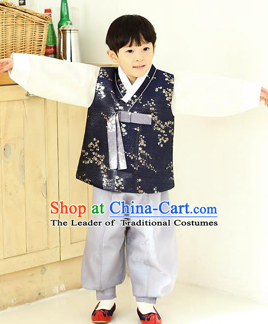 Asian Korean National Traditional Handmade Formal Occasions Boys Embroidery Navy Vest Hanbok Costume Complete Set for Kids