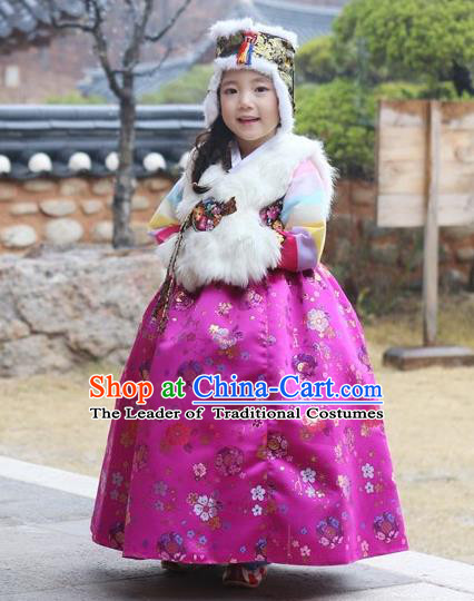 Asian Korean National Handmade Formal Occasions Wedding Girls Clothing White Vest and Rosy Dress Palace Hanbok Costume for Kids
