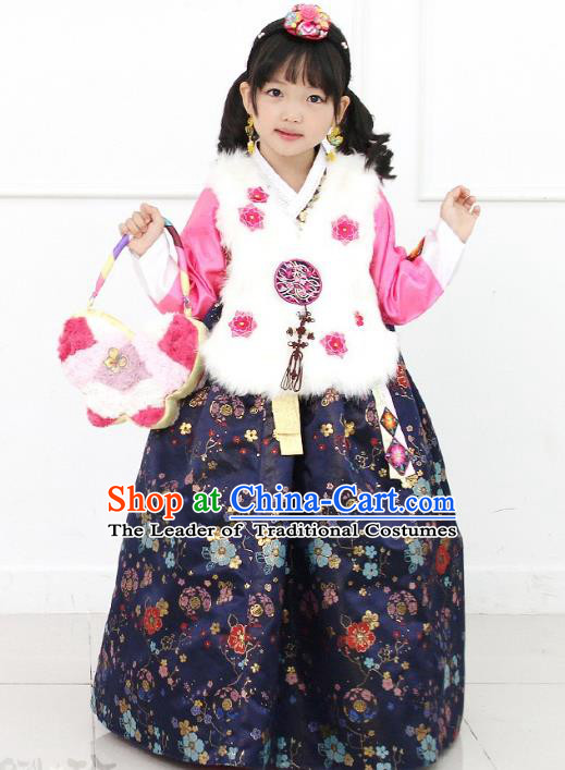 Asian Korean National Handmade Formal Occasions Wedding Girls Clothing White Embroidered Vest and Navy Dress Palace Hanbok Costume for Kids
