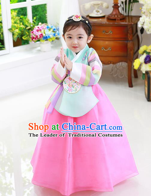 Korean National Handmade Formal Occasions Girls Clothing Palace Hanbok Costume Embroidered Green Blouse and Pink Dress for Kids
