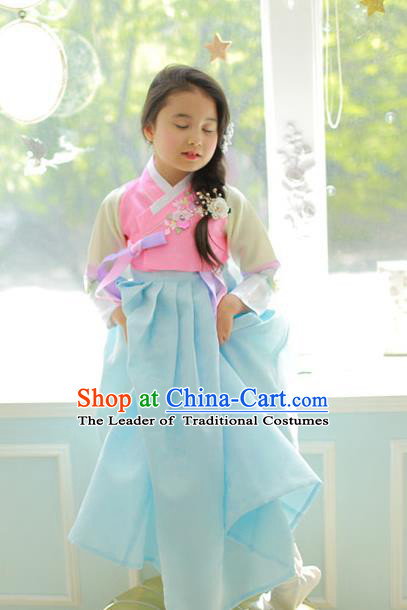 Korean National Handmade Formal Occasions Girls Clothing Palace Hanbok Costume Embroidered Pink Blouse and Blue Dress for Kids