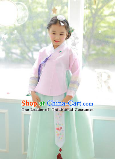 Korean National Handmade Formal Occasions Girls Clothing Palace Hanbok Costume Embroidered Pink Blouse and Green Dress for Kids