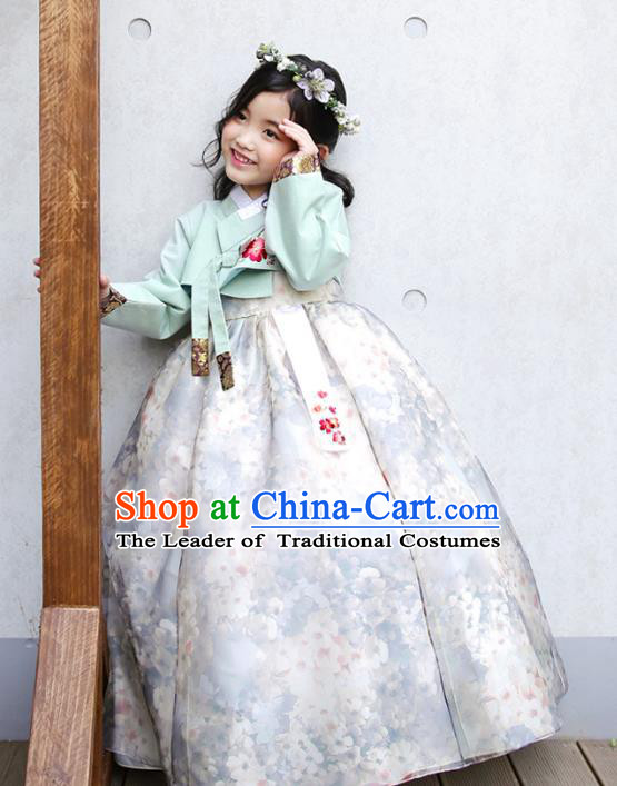 Traditional Korean National Handmade Formal Occasions Girls Clothing Palace Hanbok Costume Embroidered Green Blouse and White Dress for Kids