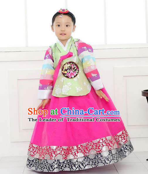 Traditional Korean National Handmade Formal Occasions Girls Clothing Palace Hanbok Costume Embroidered Green Blouse and Rosy Dress for Kids