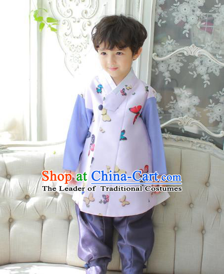 Asian Korean National Traditional Handmade Formal Occasions Boys Printing Butterfly Lilac Vest Hanbok Costume Complete Set for Kids