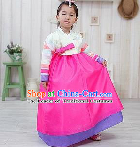 Traditional Korean Handmade Formal Occasions Embroidered Palace Princess Hanbok Pink Dress Clothing for Girls