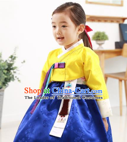 Traditional Korean Handmade Formal Occasions Embroidered Baby Princess Hanbok Blue Dress Clothing for Girls