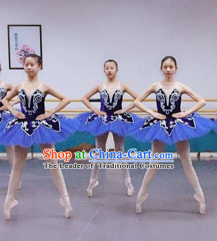Traditional Modern Dancing Compere Costume, Women Opening Classic Chorus Singing Group Dance Dress, Modern Dance Classic Ballet Dance Blue Veil Dress for Women