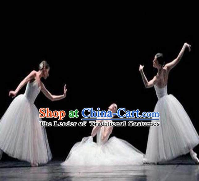 Traditional Modern Dancing Compere Costume, Opening Classic Chorus Singing Group Dance Bubble Dress Tu Tu Dancewear, Modern Dance Classic Ballet Dance Elegant Long Dress for Women
