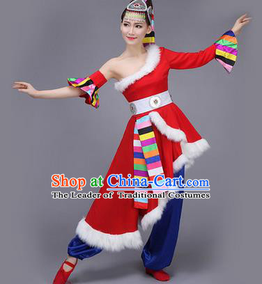 Traditional Chinese Zang Nationality Dance Costume, Folk Dance Ethnic Clothing Suit, Chinese Tibetan Minority Nationality Red Dress for Women