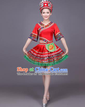 Traditional Chinese Miao Nationality Dance Costume, Hmong Female Folk Dance Ethnic Pleated Skirt, Chinese Minority Nationality Embroidery Red Dress for Women