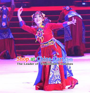 Traditional Chinese Zang Nationality Dancing Costume, Tibetan Folk Dance Ethnic Red Pleated Skirt, Chinese Minority Nationality Embroidery Costume for Women