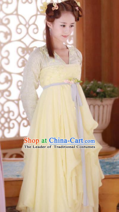 Traditional Chinese Ancient Tang Dynasty Swordswoman Embroidered Dress Clothing for Women