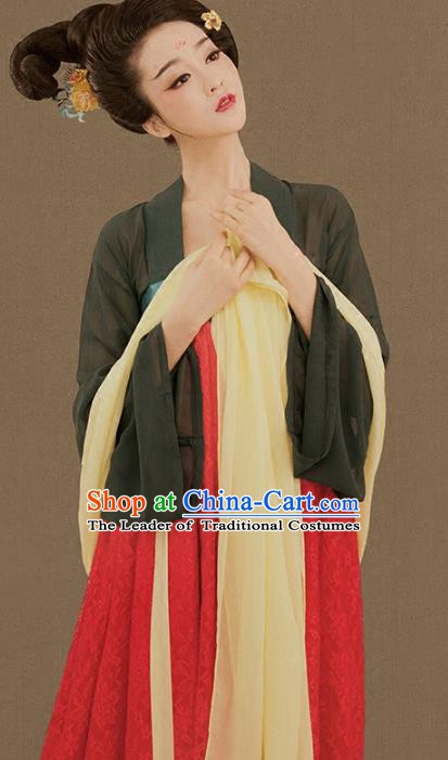 Traditional Chinese Ancient Tang Dynasty Palace Lady Embroidered Hanfu Clothing for Women