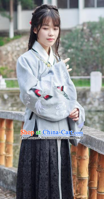 Traditional Chinese Ancient Ming Dynasty Princess Costumes for Rich Women
