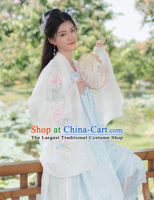 Traditional Chinese Ancient Peri Princess Embroidered Hanfu Dress Tang Dynasty Historical Costumes for Women