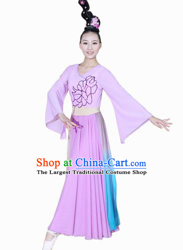 Chinese Traditional Folk Dance Lilac Dress Classical Dance Costume for Women