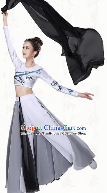 Chinese Traditional Classical Dance Grey Dress Ancient Group Dance Costumes for Women