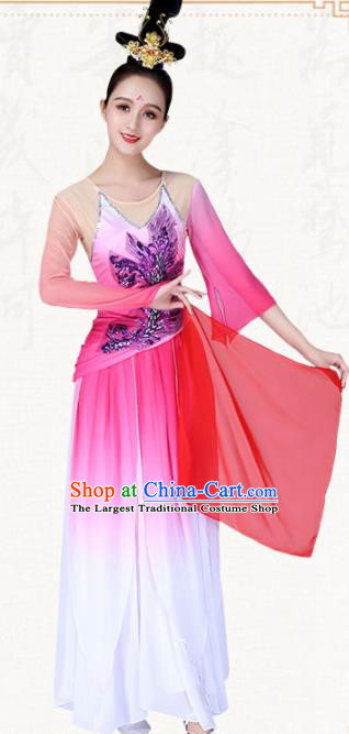 Chinese Traditional Classical Dance Pink Dress Ancient Group Dance Costumes for Women