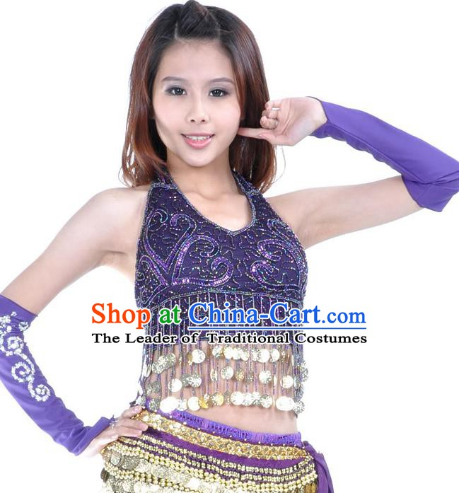 Indian Oriental Dance Belly Dance Costume India Raks Sharki Purple Brassiere and Sleevelet for Women