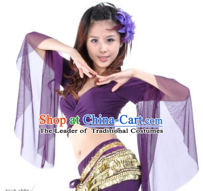 Indian Oriental Dance Belly Dance Costume Upper Outer Garment India Raks Sharki Purple Blouse for Women