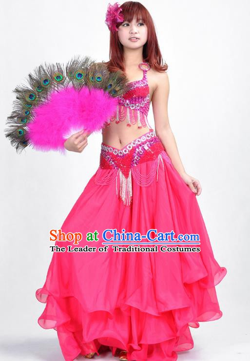 Indian Belly Dance Rosy Dress Bollywood Oriental Dance Clothing for Women