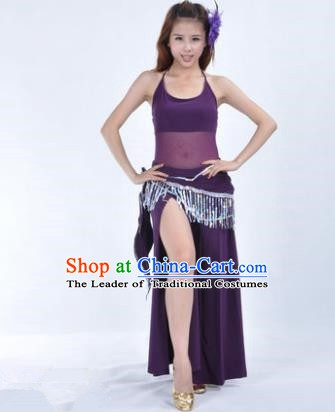 Traditional Indian National Belly Dance Purple Dress India Oriental Dance Costume for Women