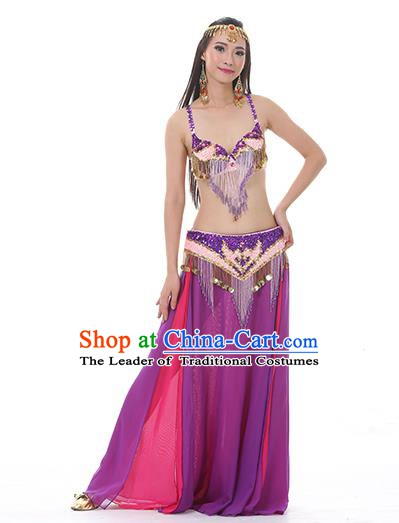 Indian National Belly Dance Clothing India Oriental Dance Sexy Purple Dress for Women