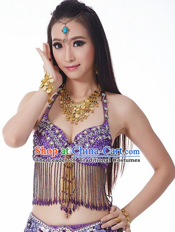 Indian National Belly Dance Tassel Purple Brassiere Bollywood Oriental Dance Costume for Women
