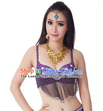 Indian Belly Dance Crystal Purple Brassiere Asian India Oriental Dance Costume for Women