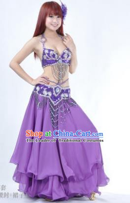 Traditional Indian Bollywood Belly Dance Purple Dress India Oriental Dance Costume for Women