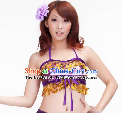 Indian Belly Dance Purple Garter Brassiere Asian India Oriental Dance Costume for Women