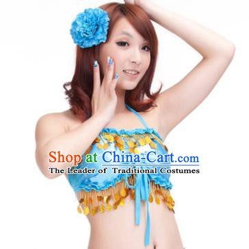 Indian Belly Dance Blue Garter Brassiere Asian India Oriental Dance Costume for Women